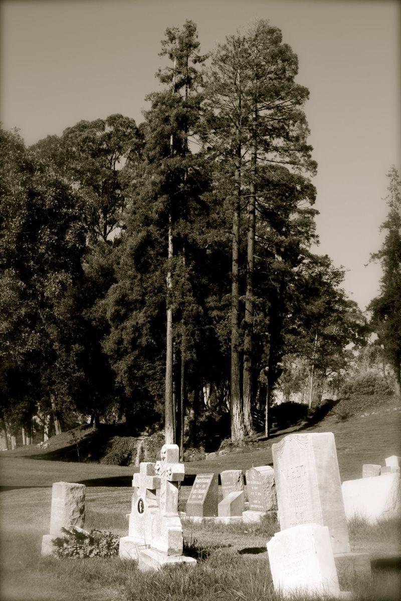 Pa's grave