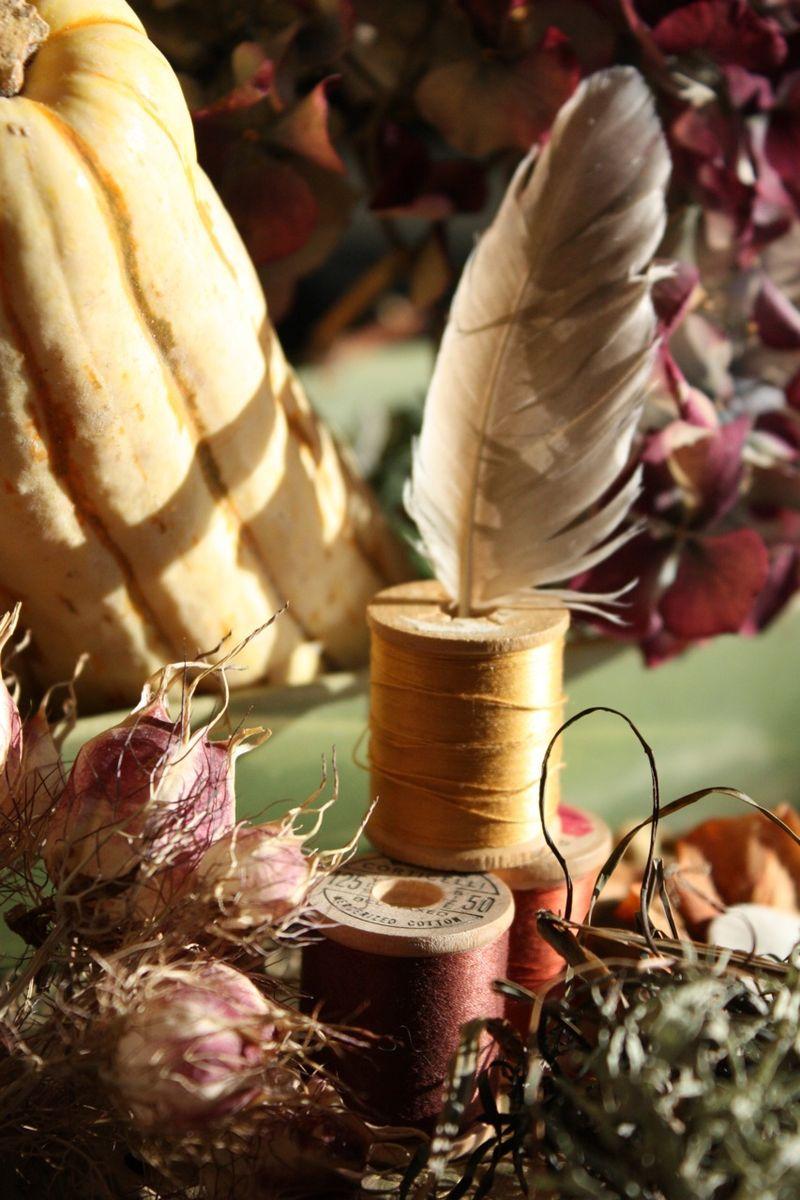 Autumnstill2
