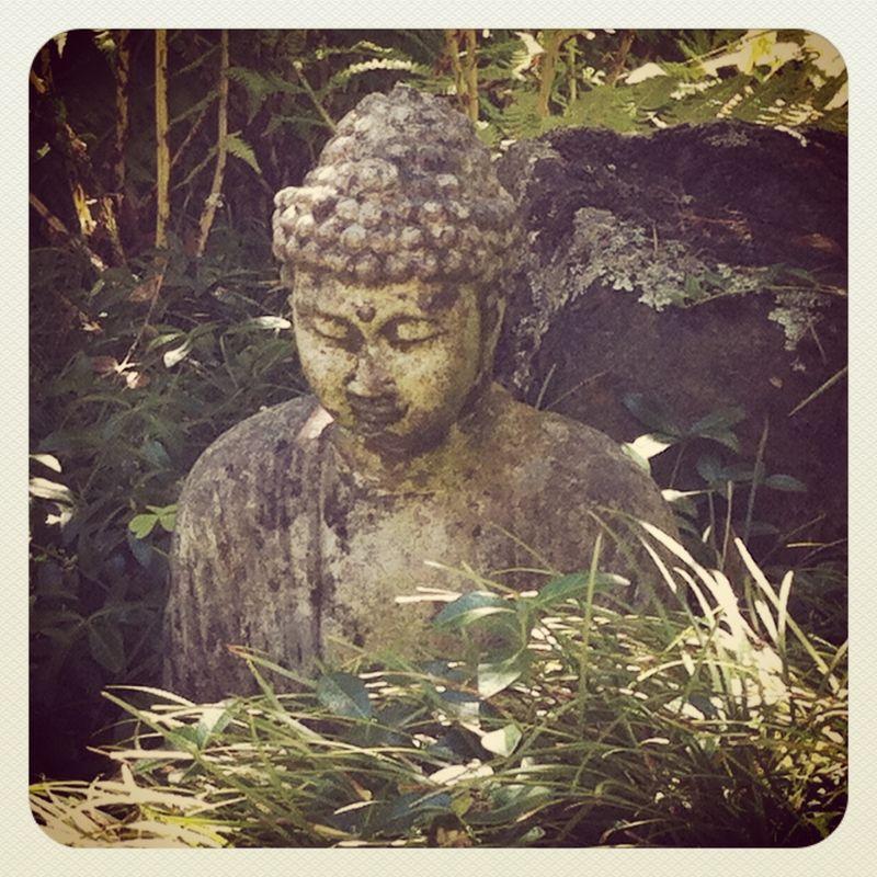 Buddha dark