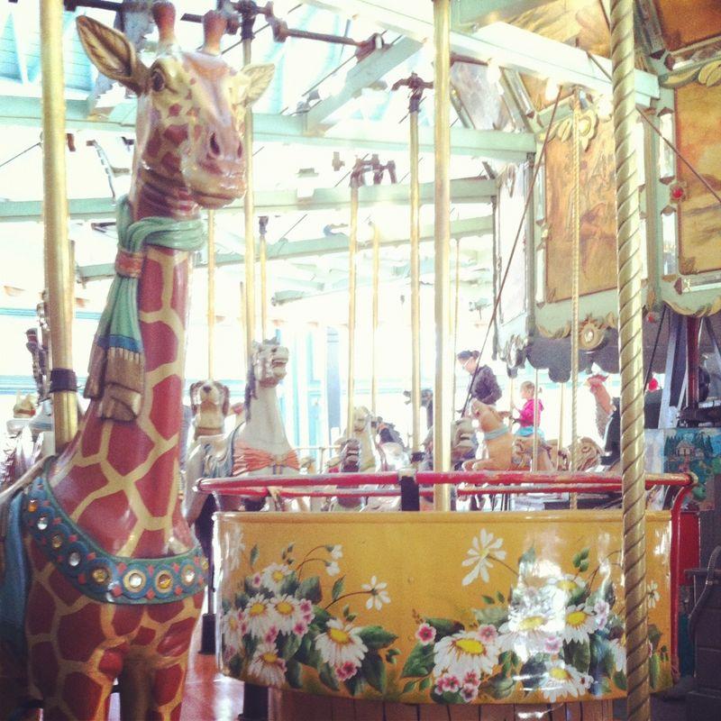 Merry giraffe