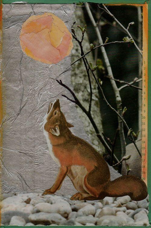 Elk Call Moon